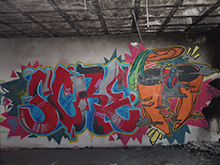 Zana Scre